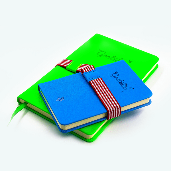 loja-virtual-febracis-caderno-gratidao-verde