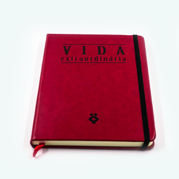 febracis-loja-virtual-caderno-vida-extraordinaria